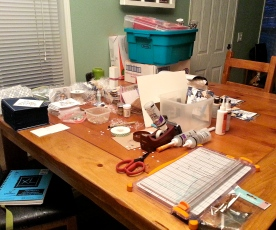 I am a MESSY crafter! You can see I'm not only putting together cards but my Santas are stacked on the table too!